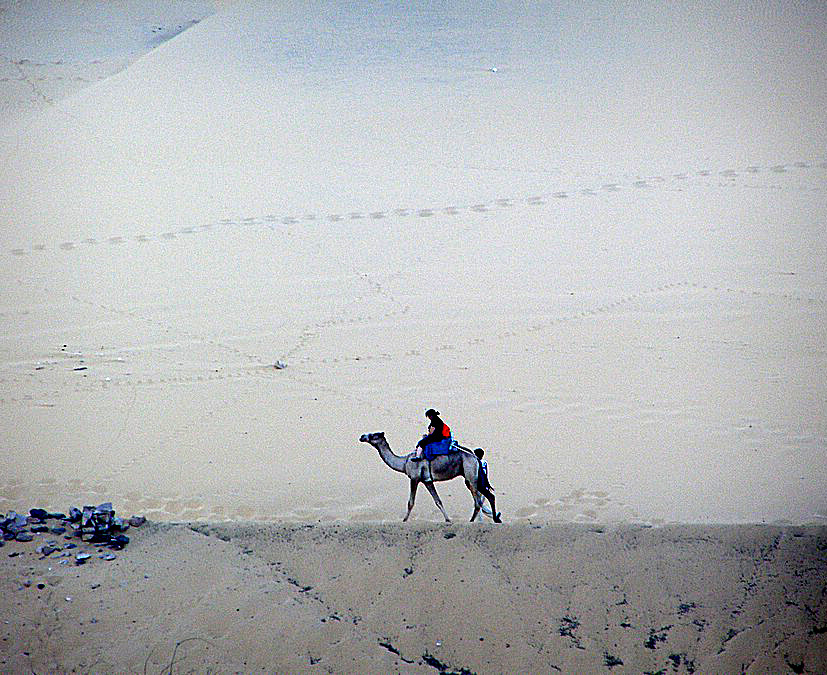 ,,Белое безмолвие'' пустыни