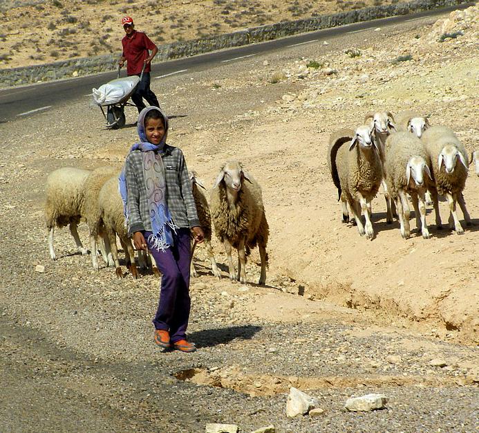 Жители Туниса