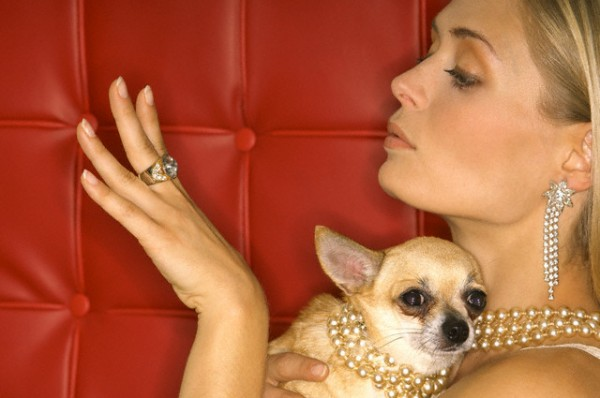 Woman and her chihuahua --- Image by © Peter Frank/Corbis